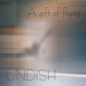 Image pour 'A Gift of Flying'