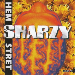 Image for 'Hem Stret'