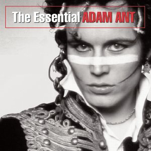 Image for 'The Essential Adam Ant'