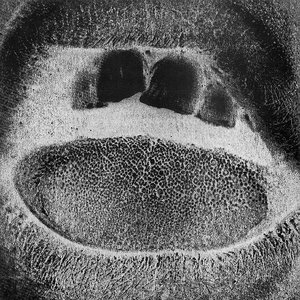Imagem de 'Form Destroyer'