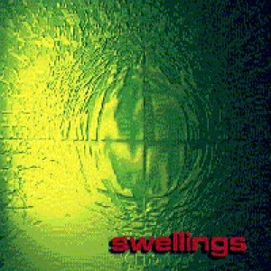 Image for 'The Swellings'