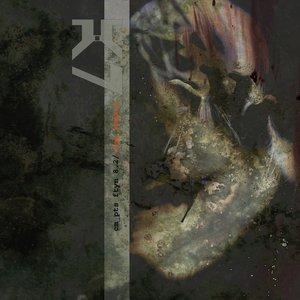 Image for 'nau ymmaru'