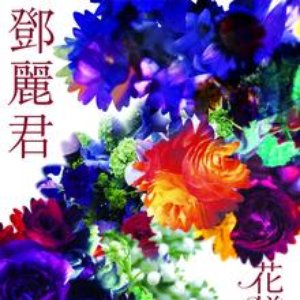 Bild för 'Hua Yang Nian Hua'