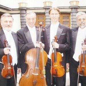 Image for 'Quartetto Cassoviae'