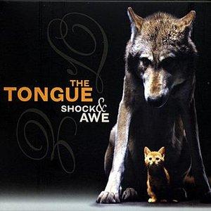 Image for 'Shock And Awe'