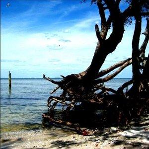 Image for 'Merciless Ocean'