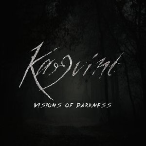 Image for 'Vision Of Darkness'