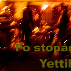 Image for 'po stopach yettiho'