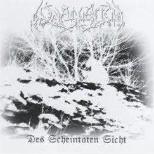 Image for 'Des Scheintoten Sicht'