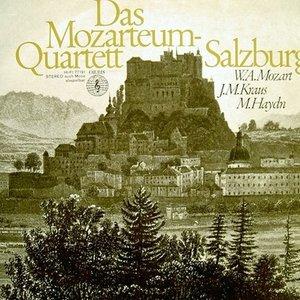 Image for 'Mozarteum Quartet Salzburg'