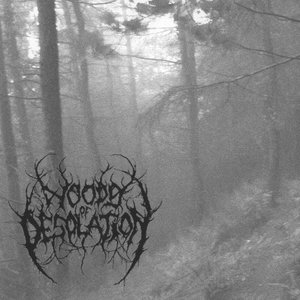 Image for 'Woods of Desolation'