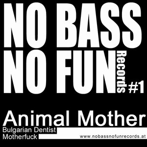 Image for 'No Bass No Fun 01'