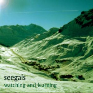 Image for 'seeglas - if you really wanted to'