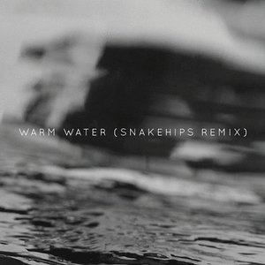 Image for 'Warm Water - Snakehips Remix'