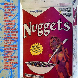 Image for 'Michigan Nuggets'