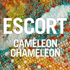 Immagine per 'Caméleon Chameleon'