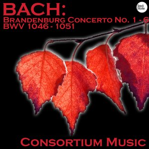 Image for 'Bach: Brandenburg Concerto No. 1 - 6 BWV 1046 - 1051'