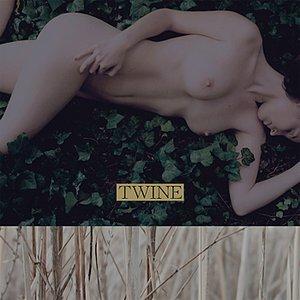 Bild för 'Twine'