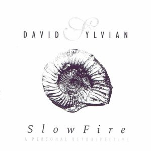 Image for 'Slow Fire: A Personal Retrospective (disc 1)'