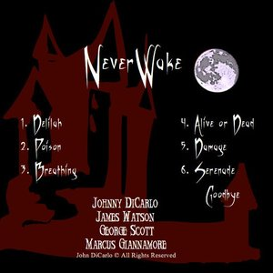 Image for 'NeverWake Demo'