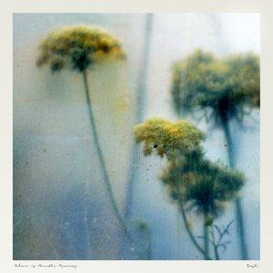 Image for 'Colour is Breathe Remixes'
