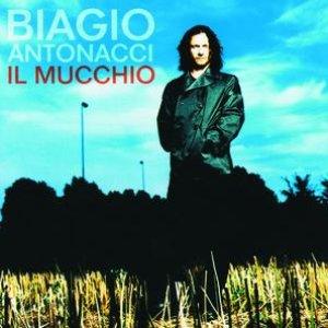 Image pour 'Il Mucchio'