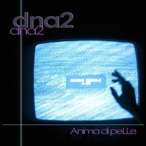 Image for 'Anima di pelle'