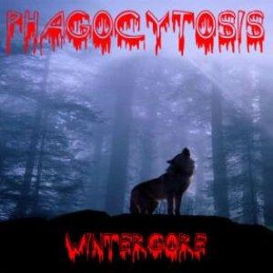 Image for 'Phagocytosis'