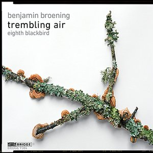 Image for 'trembling air'