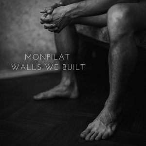 Image for 'Walls We Built'