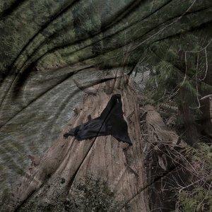 Image pour 'Gravel Remixed'