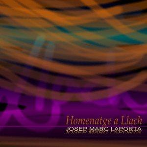 Image for 'Homenatge a Lluís Llach'