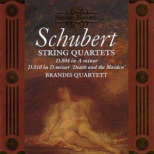 Imagen de 'String Quartet in A Minor, D. 804: Allegro Ma Non Troppo'