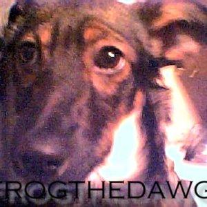 Bild för 'Frogthedawg'