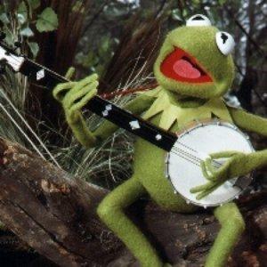 Bild för 'Kermit the Frog'