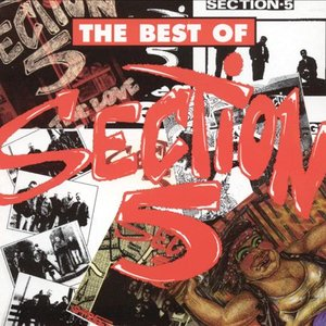Image for 'The Best Of Section 5'