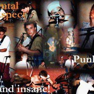 Image for 'Mental Aspect'