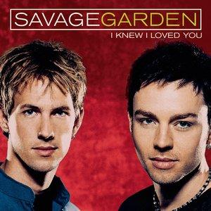 Image for 'I Knew I Loved You'
