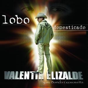 Image for 'Lobo Domesticado'