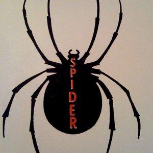 Bild für 'Spider'
