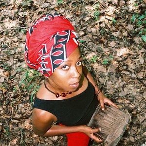 Image for 'A Peace of Ebony'