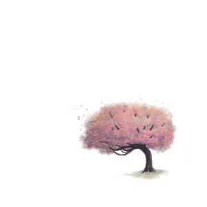Imagem de 'Strengths'