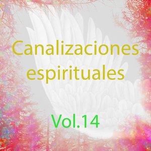 Imagen de 'Canalizaciones Espirituales, Vol. 14 (El Poder de la Energía)'