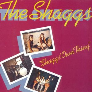 Image for 'Shaggs' Own Thing'