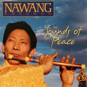 Image for 'Wanting Peace'