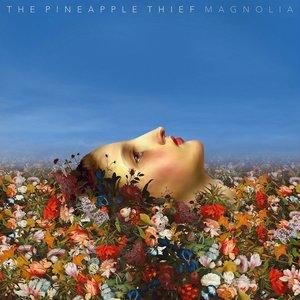 Image pour 'Magnolia'