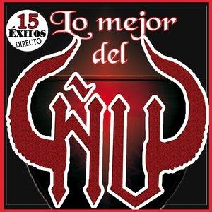 Image for 'Lo Mejor Del Ñu. 15 Grandes Exitos en Directo De Jose Carlos Molina'