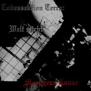 Image for 'Todessektion Terra: Welt stirbt'