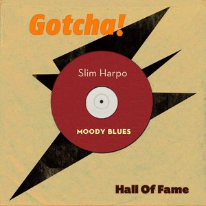 Image for 'Moody Blues (Hall of Fame)'