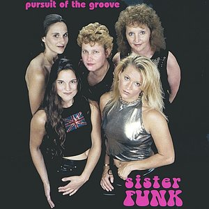 Image for 'Pursuit of the Groove'
